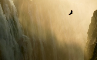 Mac OS X Eagle Waterfall wallpapers and stock photos