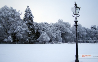 Previous: Winter Wonderland