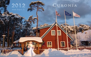 Christmas in the Curonian spit wallpapers and stock photos