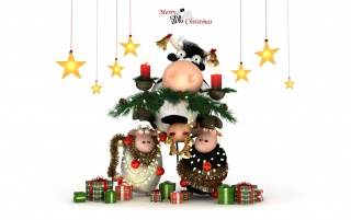 Christmas cow and sheeps wallpapers and stock photos