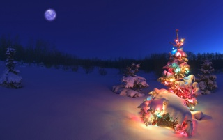 Christmas tree in the snow wallpapers and stock photos