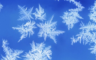 Next: Snowflake Photo