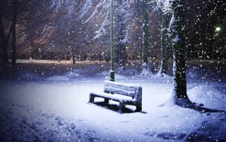 Snowing Park wallpapers and stock photos