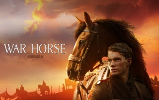 War Horse Official wallpapers and stock photos