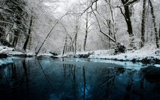 Winter Scenary wallpapers and stock photos