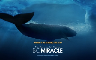 Random: Big Miracle Movie