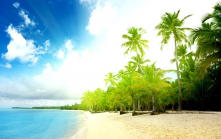Beach wallpapers and stock photos