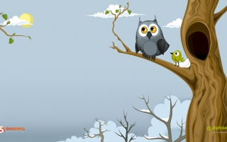 Owl in the spring wallpapers and stock photos