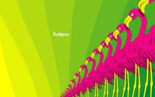 Funk Flamingo wallpapers and stock photos