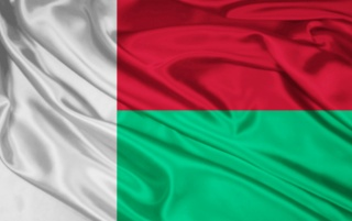 Madagascar Flag wallpapers and stock photos