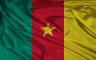 Next: Cameroon Flag