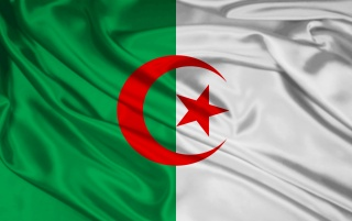 Algerien-Flagge wallpapers and stock photos