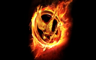 Hunger Games Fire Logo wallpapers and stock photos