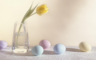 Easter eggs and flower wallpapers and stock photos