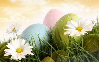 Dotted eggs and flowers wallpapers and stock photos