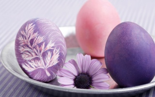 Purple Easter eggs wallpapers and stock photos