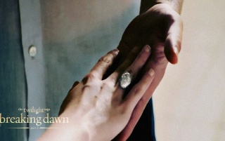 The Ring - Breaking Dawn Part 2 wallpapers and stock photos
