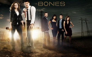 Bones TV Show Cast wallpapers and stock photos