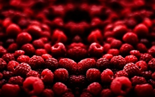 Raspberry wallpapers and stock photos