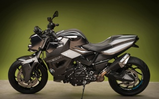 2012 Vilner Custom Bike BMW F800 R Predator Static Green Background wallpapers and stock photos
