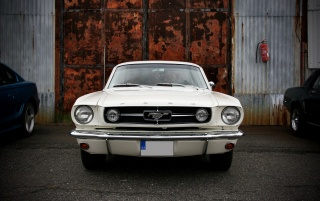Random: White Vintage Ford Mustang Front