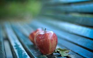 Apples on a Bench wallpapers and stock photos