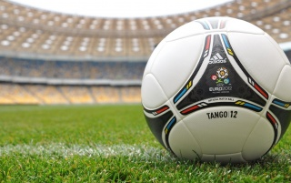 UEFA Euro 2012 Poland & Ukraine Official Ball Grass wallpapers and stock photos