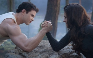 Breaking Dawn Part 2: Bella and Emmett wallpapers and stock photos