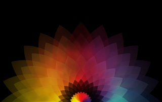Colored Abstract Flower wallpapers and stock photos