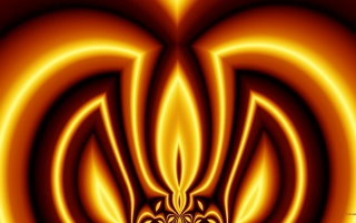 Royal Flame wallpapers and stock photos
