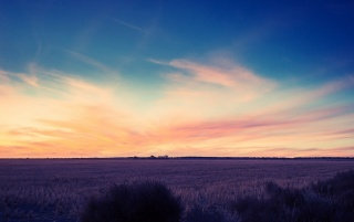 Campo en el Sunset wallpapers and stock photos