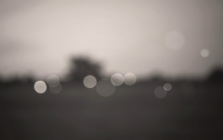Monochrome Bokeh wallpapers and stock photos