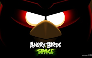 Angry Birds Space wallpapers and stock photos