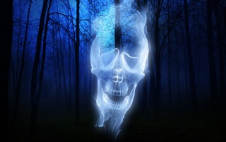 Forest Skull Ghost wallpapers and stock photos