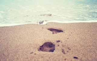 Footsteps in the Sand wallpapers and stock photos
