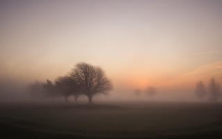 Foggy Morning Sunrise wallpapers and stock photos