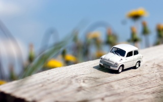 Previous: Miniature Toy Car on Wood