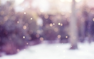 Winter Bokeh wallpapers and stock photos