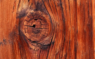Vista Holz Knoten wallpapers and stock photos