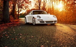Previous: Porsche 911 Autumn