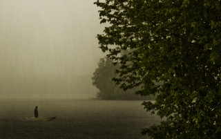 Previous: Rainy Day on the Lake