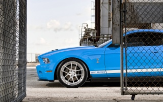 Blue Ford Mustang Shelby GT500 wallpapers and stock photos