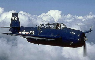 Previous: Grumman TBM-3E Avenger