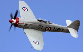 Hawker Sea Fury wallpapers and stock photos