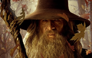 Gandalf the Gray wallpapers and stock photos