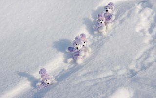 Winter Teddy Bears wallpapers and stock photos