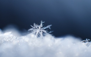 Snowflake Macro wallpapers and stock photos