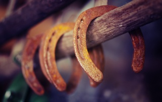 Rusty Horseshoes wallpapers and stock photos