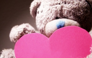 Random: Valentines Day Teddy Bear