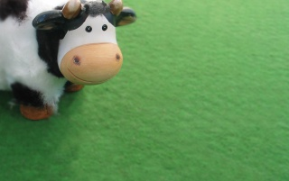 Cute cow wallpapers and stock photos
